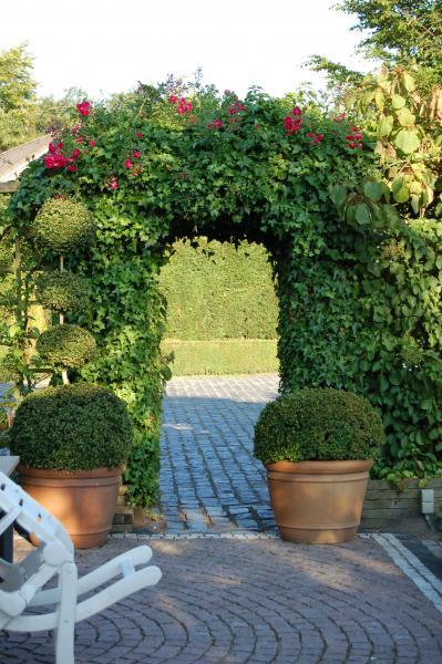 rozenboog in landschapstuin tuinaanleg
