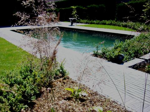 zwemvijver kleiklinkers tuinpad