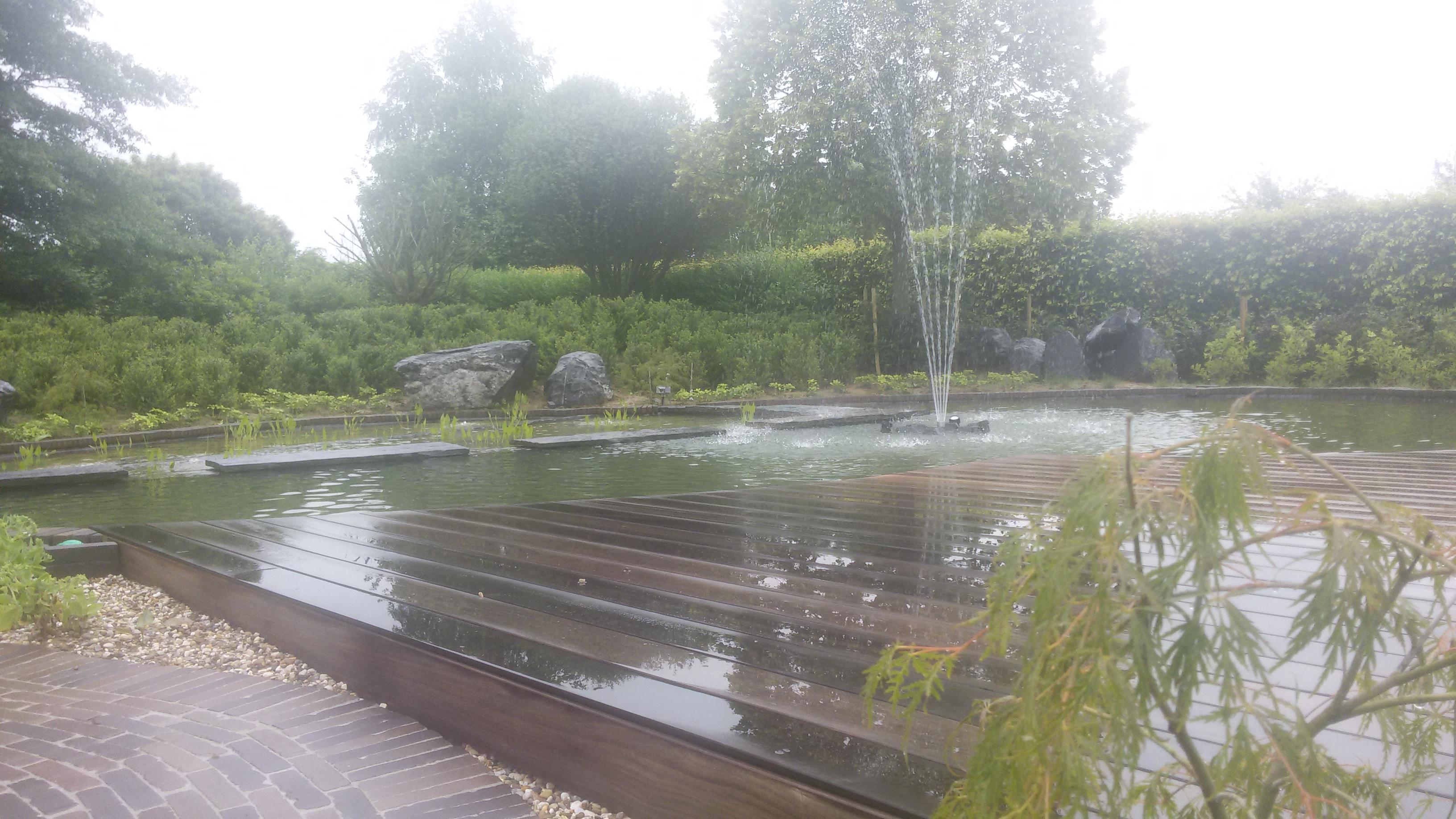 zwemvijver houten terras biologische filter tuinaanleg